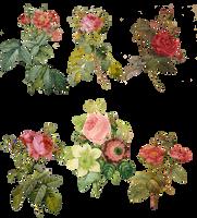 1700-1800's Roses PNG by chaseandlinda