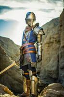 cosplay: elite knight 06 by vilys