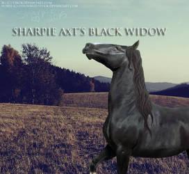 Black widow by Sharpiexxo