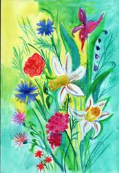 Daffodils by saysly