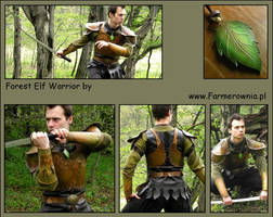 Forest Elf Warior by farmerownia