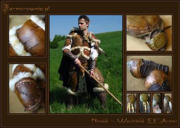 Nomad - Wasteland Elf - Final by farmerownia