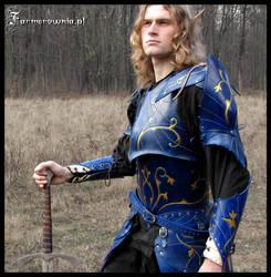 Blue Elven armor  02 by farmerownia