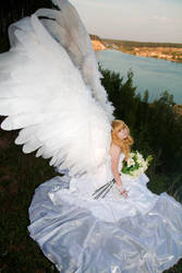fragile angel by Lilian-hime