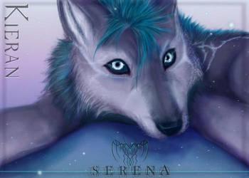 OC: Puppy Kieran by xXSerena-CrosseXx