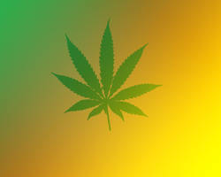 Marihuana by Vreckovka