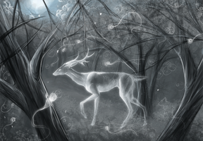 Deer spirit :speed paint: by FeralFacade