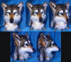 Wolf Head by FeralFacade
