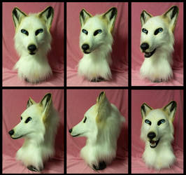 White wolf Auction by FeralFacade