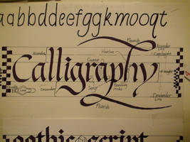 Calligraphy - Speedball Textbook by xcmer
