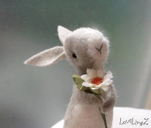Daisybunny by LoveLingz