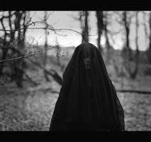 The Widow II by TheFoxAndTheRaven