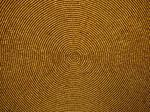 Gold Bead Halo Circle Texture by Enchantedgal-Stock