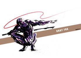 Metal Gear - Gray Fox by Yaguete