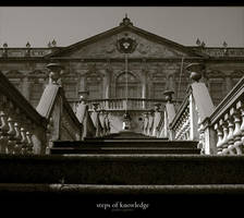 steps of knowledge by cappo