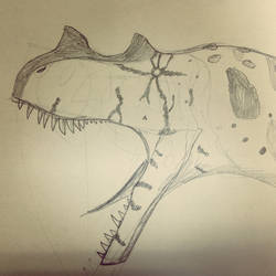 Ceratosaurus based on Chinese crocodile lizard by Covelloraptor