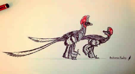 Anchiornis by Covelloraptor