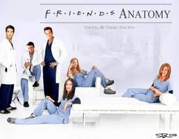 Friend's Anatomy by ryansd
