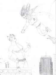 Robin the girl wonder by onizuka43