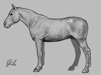 Horse sketch by chipset