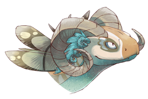 [comm] Meconopsis by CyndersAlmondEyes