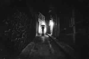 Decoy by Uomo-nella-Pioggia