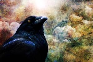 Raven by crimsonvermillion