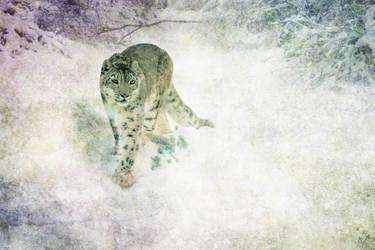 Snow Ghost Wallpaper by crimsonvermillion