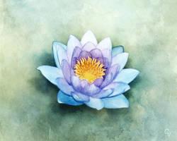 Blue Lotus by crimsonvermillion
