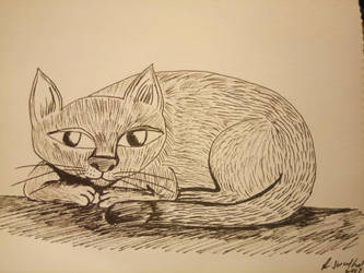 Illustration of a cat by lostempress23