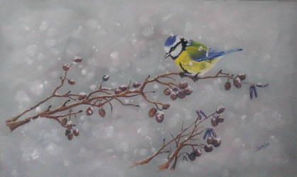 Mesange sous la neige by NekotoSan