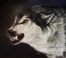 wolf by Mariya-art