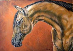 The beautiful bend by Mariya-art