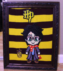 Harry Potter Perler Framed by Tony009
