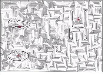 Maze 15- the sport of kings by Nebagram