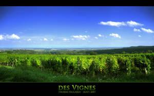 des Vignes by Niluge-KiWi