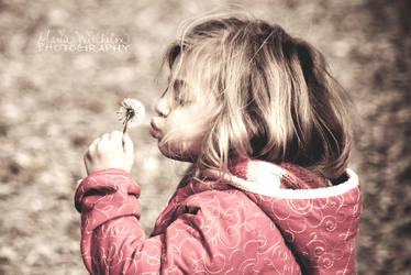 Kissing Dandelion by MariaWillhelm