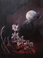 Lily by Kooros