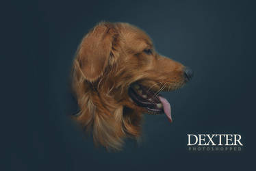 Dexter Photoshopped by darksideoftheblues