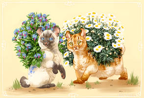 Flower Spirits by Heyriel