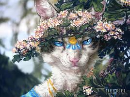 Hidden Beauty by Heyriel