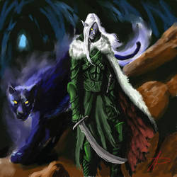 drizzt e gwenwyvar by andrepersi