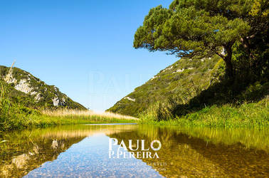 Reflections - Alcabrichel River by PauloPPereira