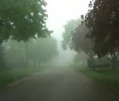 fog by chocolatemoonlight