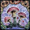 Magic Mushrooms by BassistArtistLoser