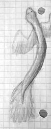 Dragon Worm Flight by EnsembleofWolves
