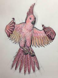 Flamebird by EnsembleofWolves