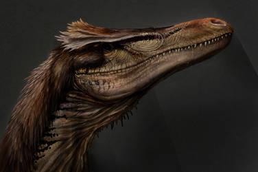 Austroraptor face by Rodrigo-Vega