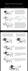Tutorial on creature design. by Rodrigo-Vega
