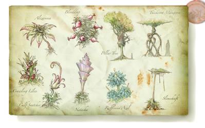 Swamp Flora by Rodrigo-Vega